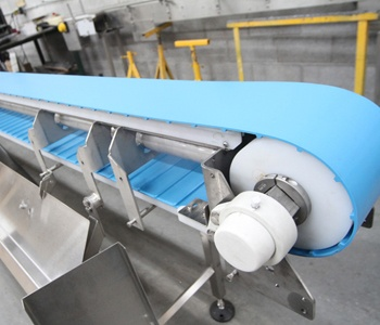 Hygienic-Conveyor-Belts