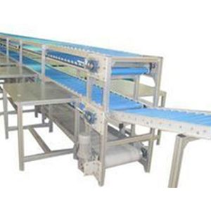 Sorting Line Conveyor Exported