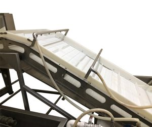 Conveyor Belts For Green Vegetable Processing Manufacturer in Sri Lanka,Thailand,Singapore,Malaysia