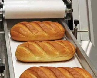 Conveyor Belts for the Baking Industry