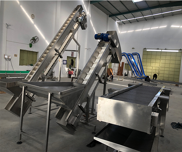 Modular Inclined Scooped conveyor for potato chips