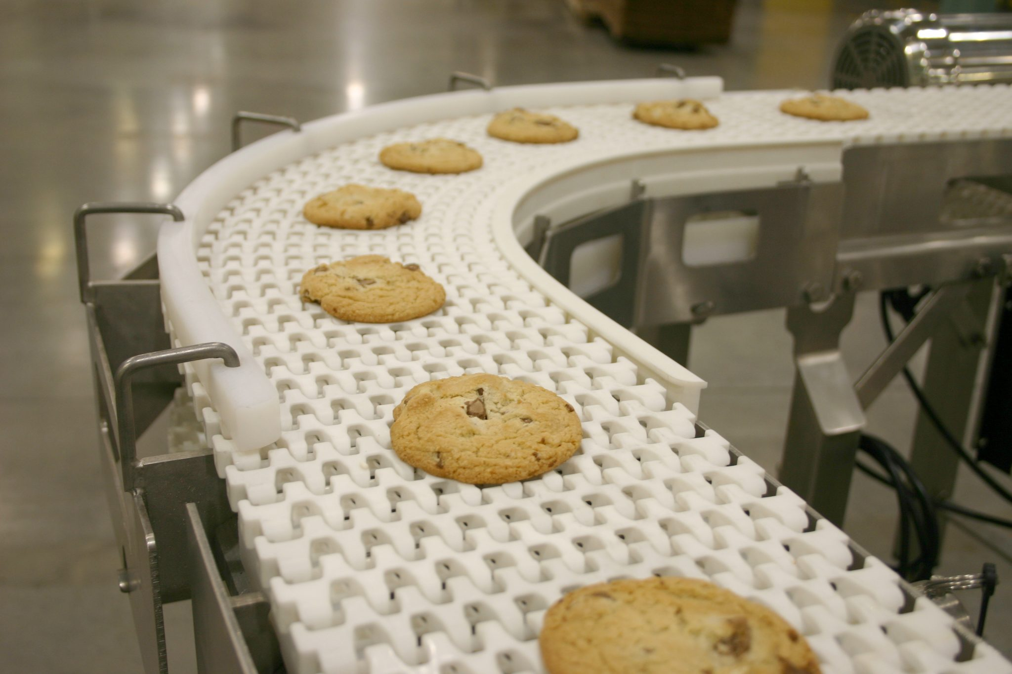 Food conveyor belt for dorner industry