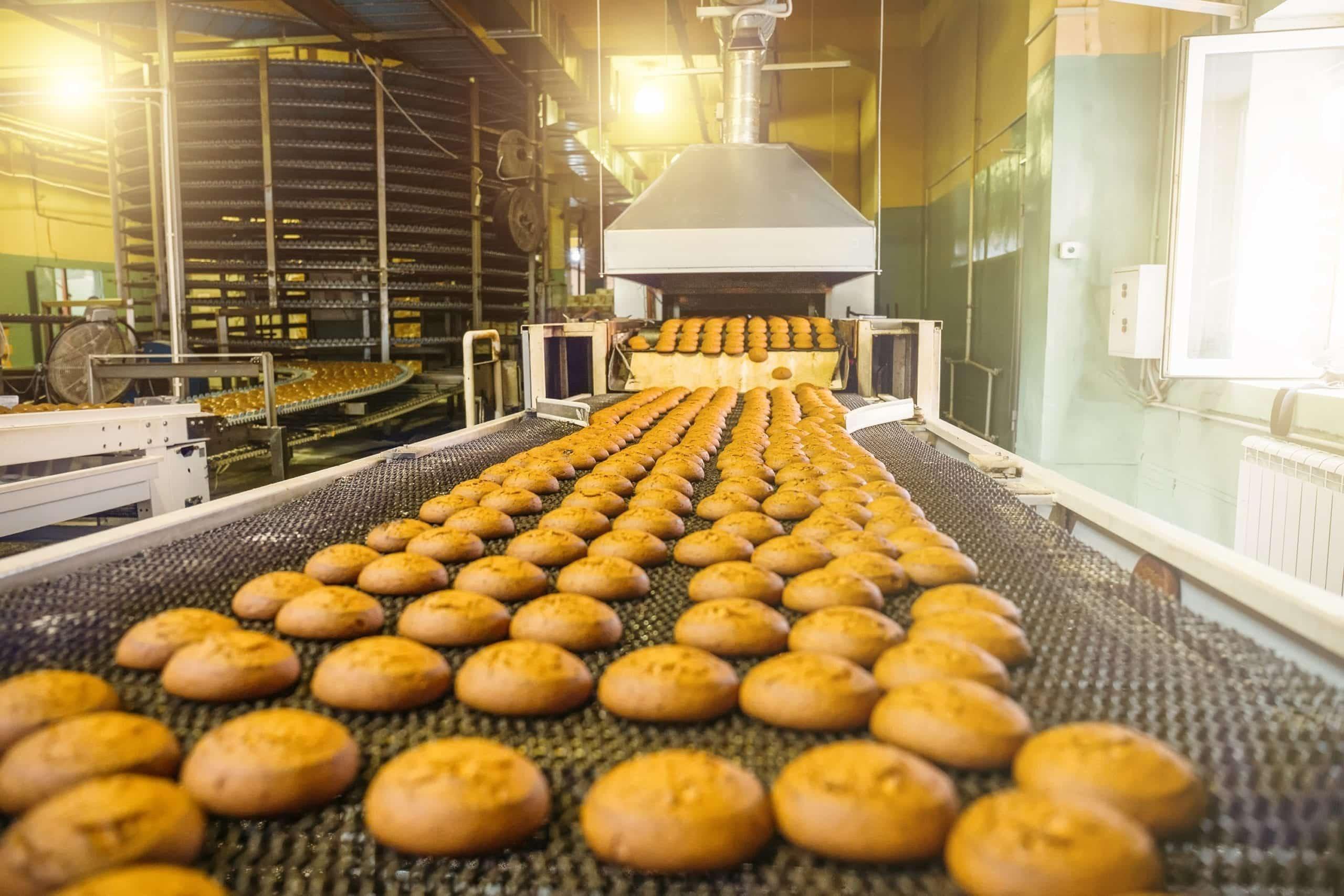 conveyor belt for baking industry