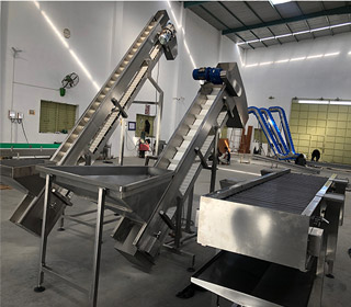 potato-chips-process-incline-modular-conveyor